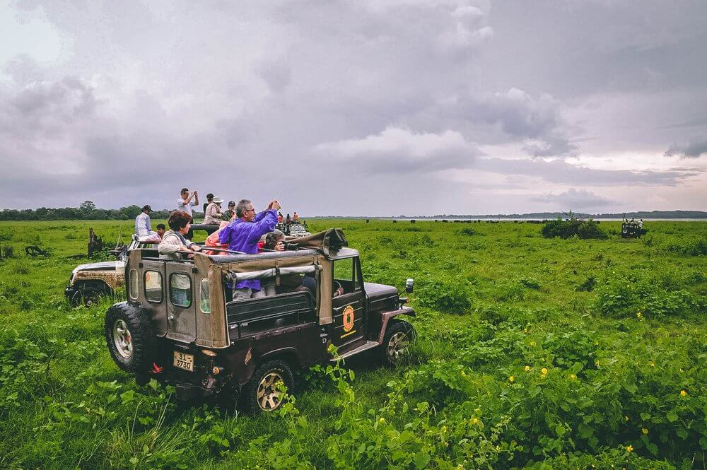 Safari na jeepie -Sri Lanka