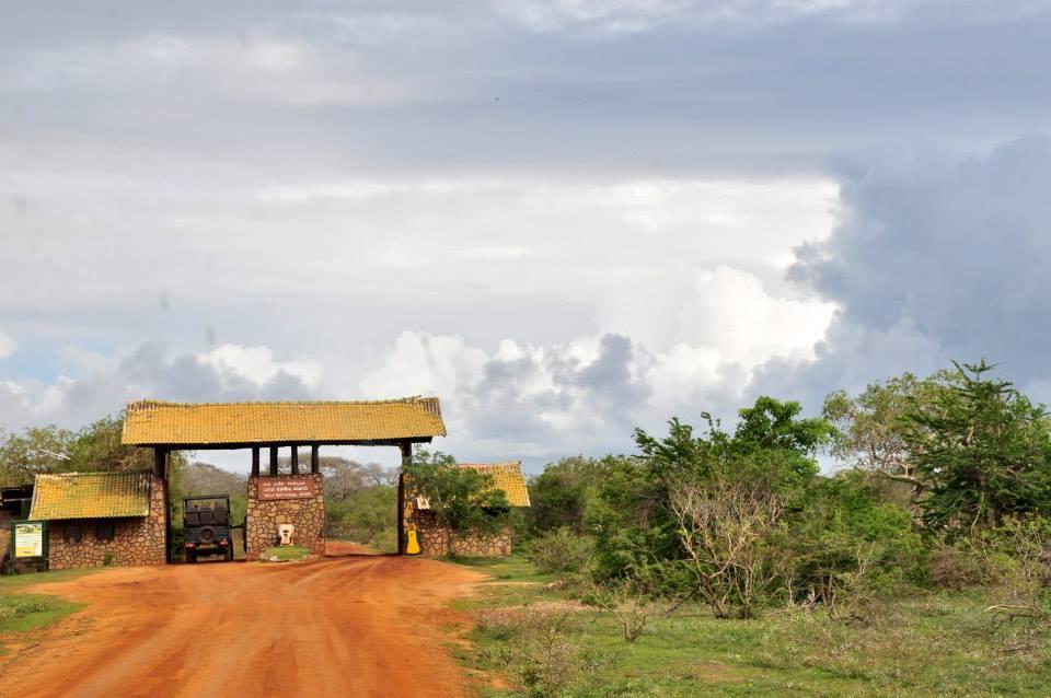 Sri Lanka Yale - safari