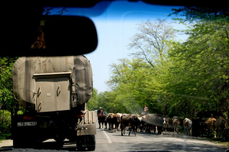 Gruzińskie drogi
