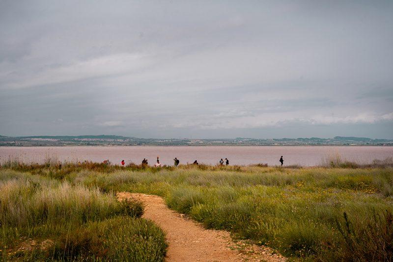 Salada de Torrevieja - różowa laguna