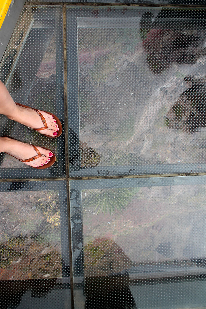 Atrakcje Madery - klif Cabo Girao