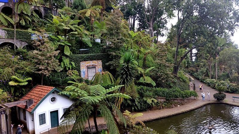 Madera Tropical Garden
