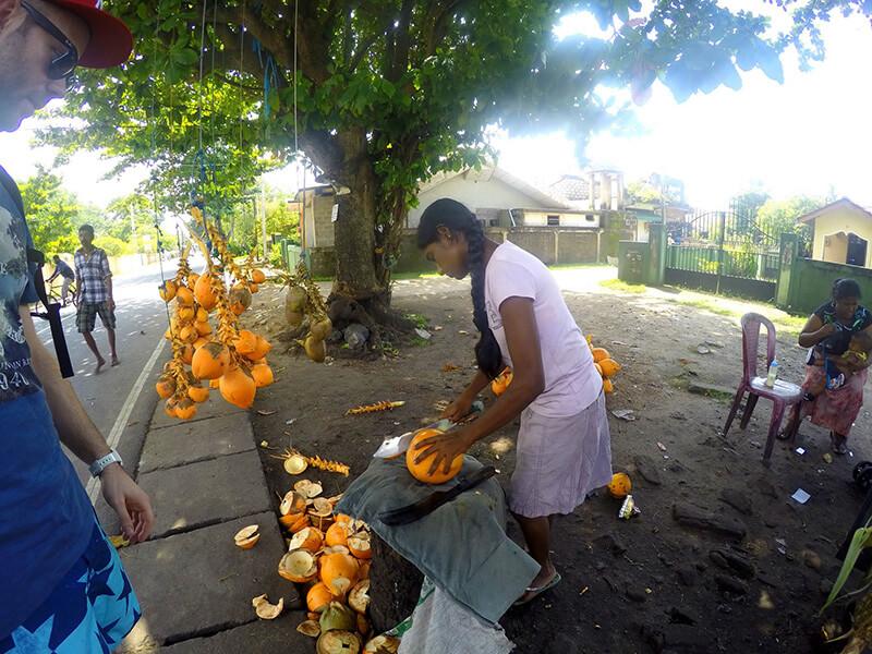 Negomob kokosy przy drodze