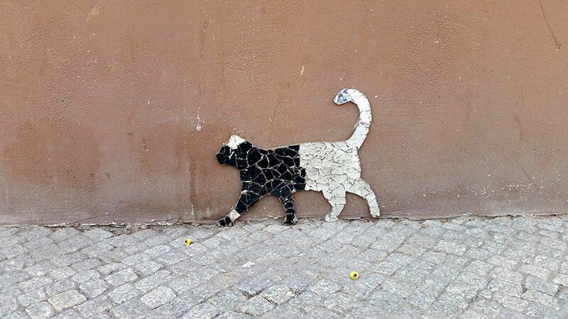 Płock Street art