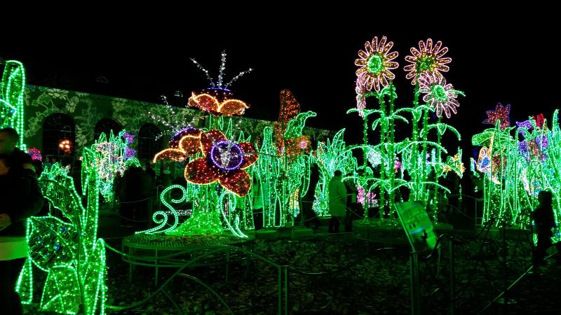 Warszawa - Wilanów - pokaz świateł - Ogród Wyobraźni