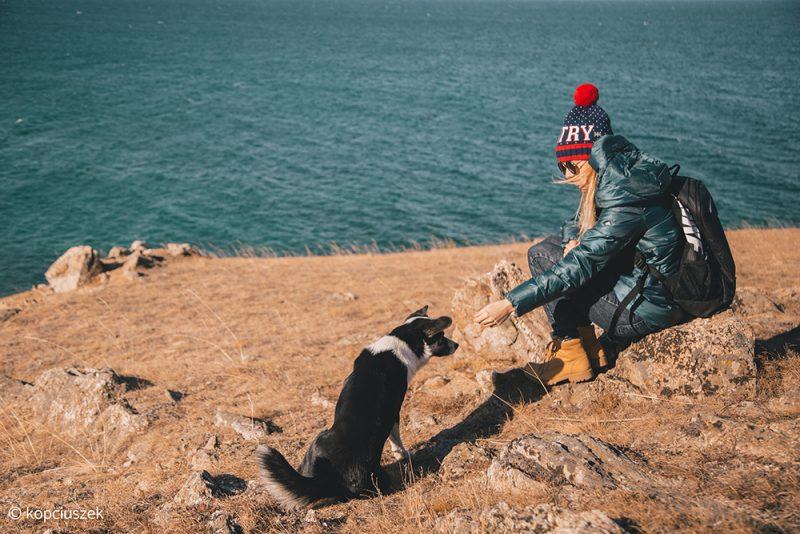 lokalne psy na wyspie olchon - atrakcje