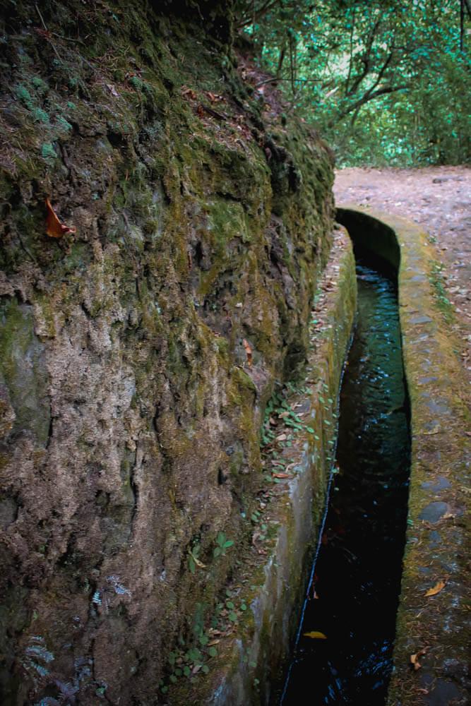 Wodna ścieżka - levady na Maderze