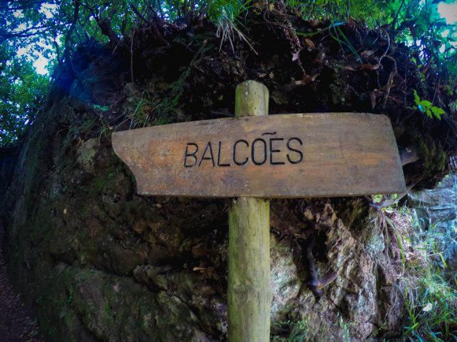 Slaki wodne levada -Ribeiro Frio na Maderze