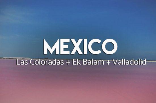 Różwa laguna Las Coloradas - Meksyk