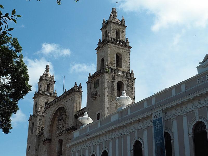 Catedra de San Ildefonso