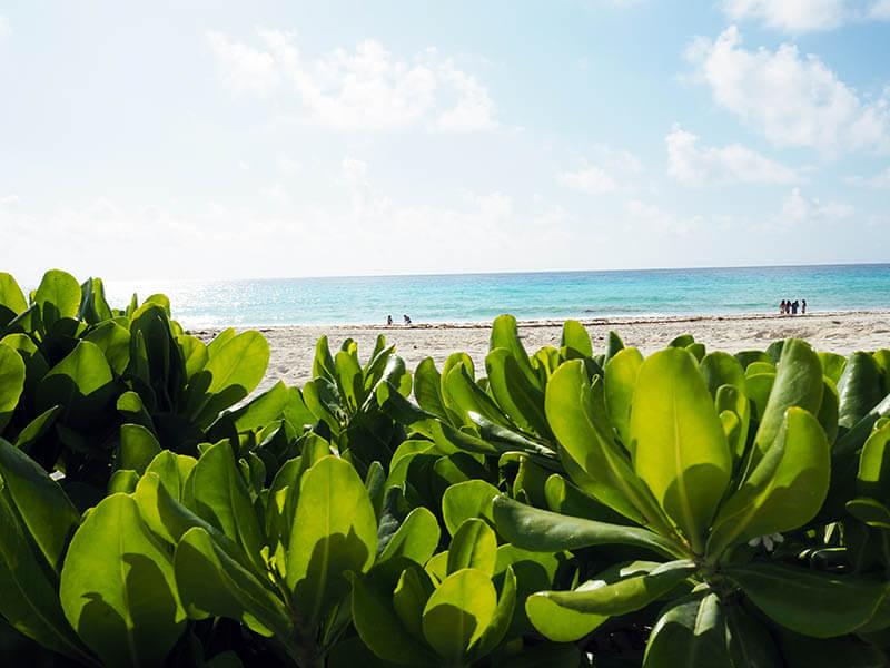 Plaże w Meksyku