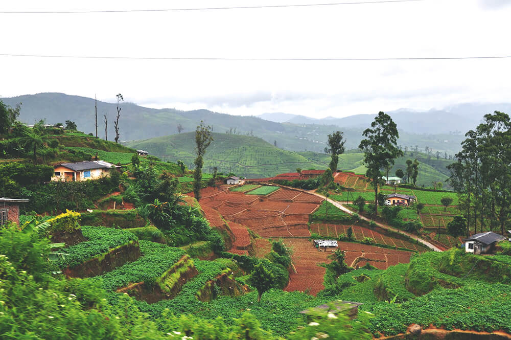 Sri Lanka widok z pociągu do Ella