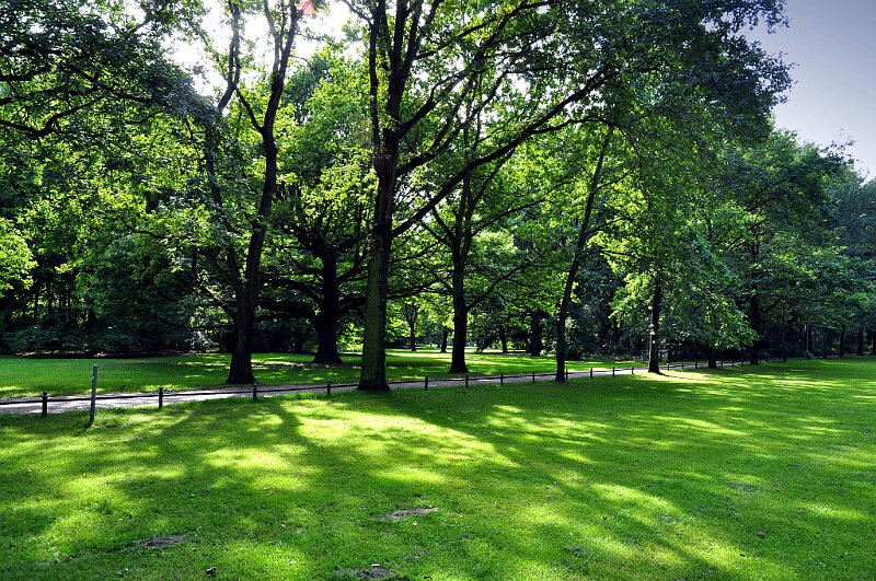 Park Tiergarten