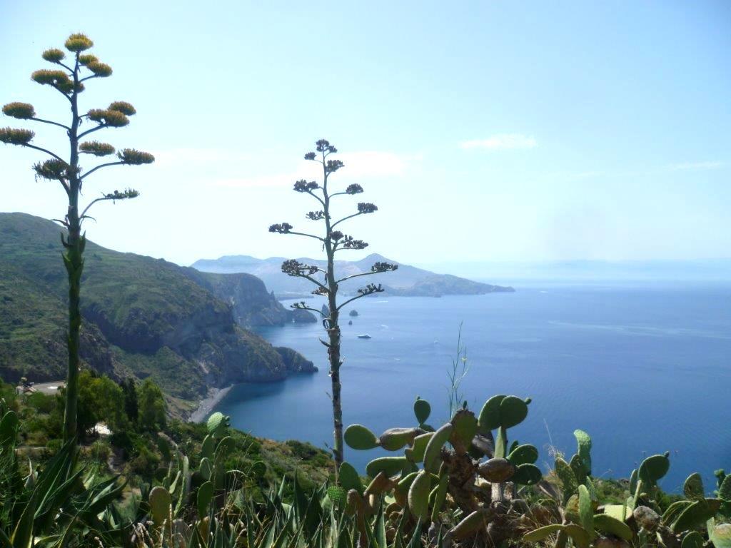 Wyspa Lipari - Sycylia roślinność