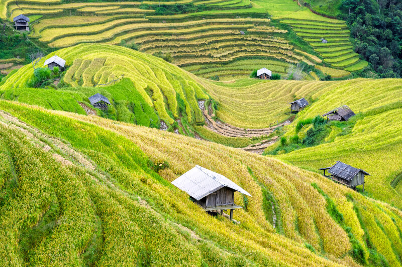 Sapa-Wietnam